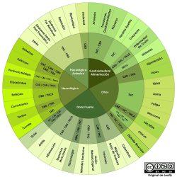 Cannabinoides y terpenos más comunes en el cannabis 1