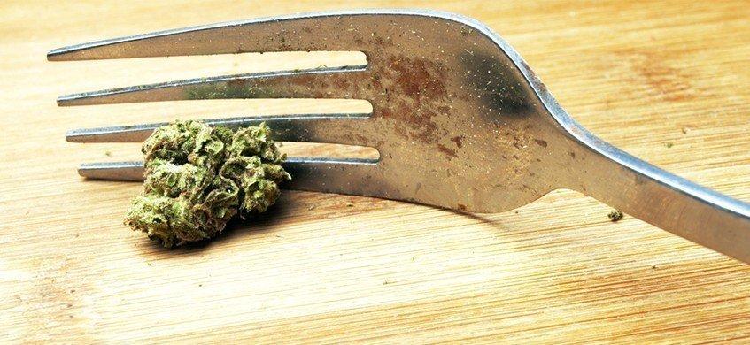 Diferencias entre inhalar e ingerir cannabis 41