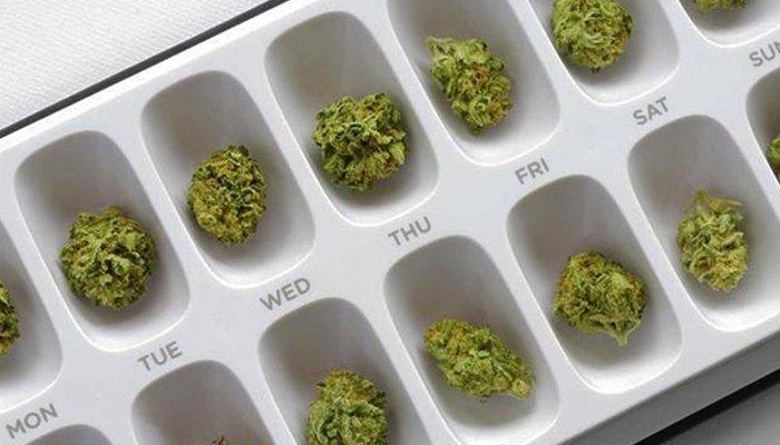 Dosis de cannabis para uso oral 42