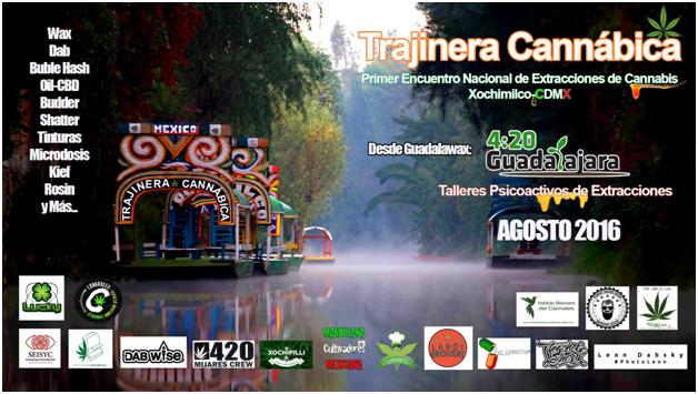 Trajinera Cannábica. Cultura de elaboración de extractos de cannabis en México Vol. 1 5