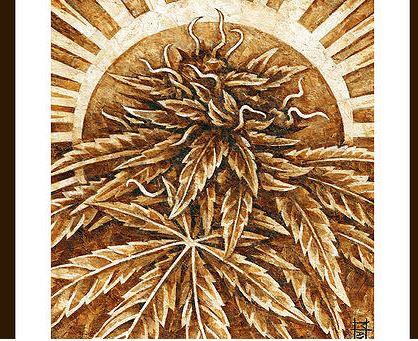 El Arte y la Marihuana 7