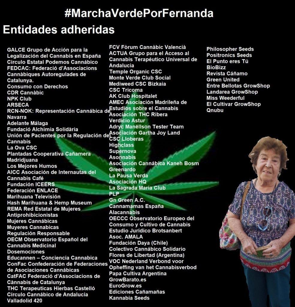 Entidades adheridas #marchaverdeporfernanda