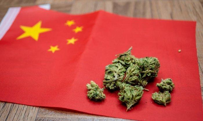el cannabis en china